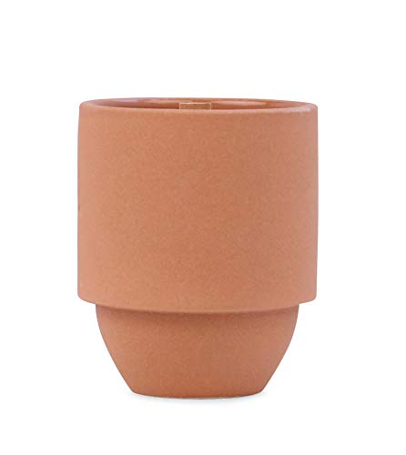 Paddywax Candles Parks Collection Scented Candle, 11-Ounce, Grand Canyon- Cactus Flower + Fern