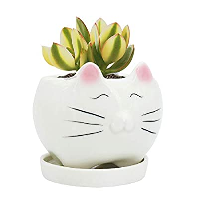 GeLive Cute Cat Succulent Planter Pot with Drainage Tray, White Ceramic Plant Container, Window Box, Unique Animal for Indoor Home Decor (White) : Garden & Outdoor