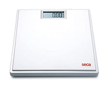 Image result for seca scales
