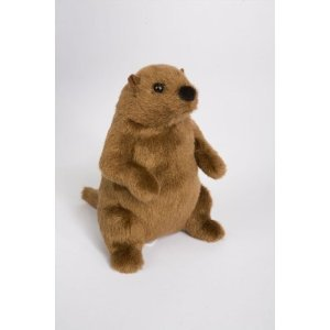 "Mr G Groundhog 6"" by Douglas Cuddle Toys - 31hYV1mSPyL - Douglas Mr G Groundhog"
