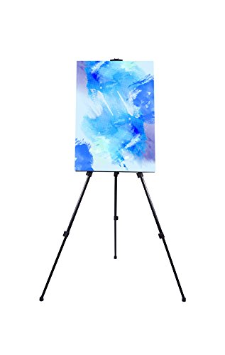 Poster Display Portable (TheDisplayDeal TM Field Easel Stand for Painting,Office, Display - Adjustable Height Folding Tripod up to 63 Inches Tall.)