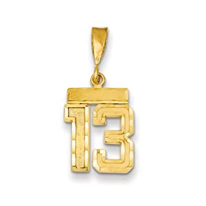 14k Yellow Gold, Varsity Collection, Small D/C Pendant Number 13