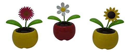 Dancing Solar Flowers - 2 Pack (Colors Vary) by SAS
