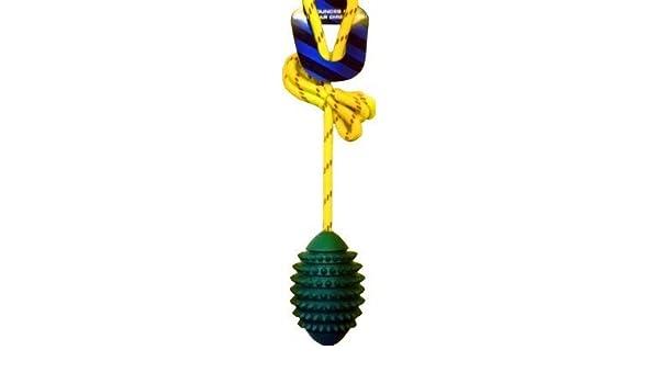 Pet Essentials Cyber perro pequeño balón de Rugby en cuerda ...
