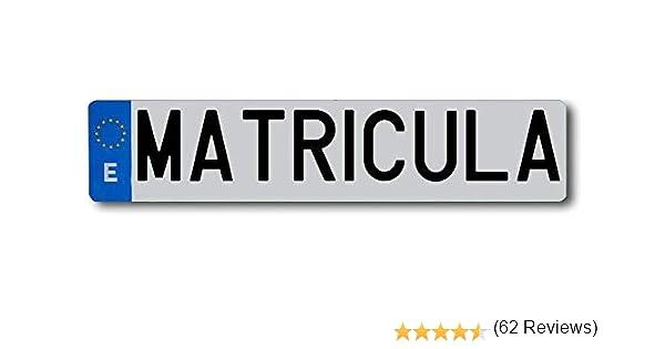 EPM Matrícula para Coche Acrílica. Se entregan con Adhesivos o Tornillos para el Montaje. Larga Ordinaria 520x110 mm Europea Homologada.: Amazon.es: Coche y moto
