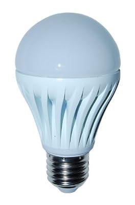 LED Light Bulb- BrightBulb LED LightBulbs A19, High Efficiency,, Warm White