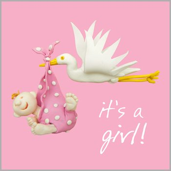 Holy Mackerel Greeting Card - Stork Baby Girl For Birthday, Christmas, Anniversary, Christening, Graduation, Maternity, New Job, Retirement, Home, (Girls New Potatoes)