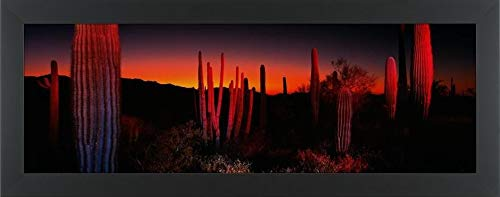 Landscape Lighting Az in US - 9