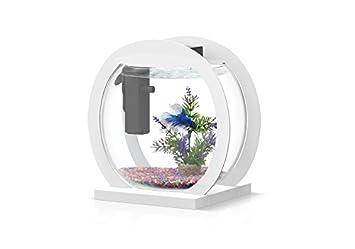 Acuario Design Globe Aquatlantis blanco: Amazon.es: Productos para mascotas