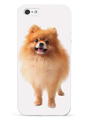 Inspired Cases - 3D Textured iPhone 5/5s/SE Case - Rubber Bumper Cover - Protective Phone Case for Apple iPhone 5/5s/SE - Long-haired Pomeranian
