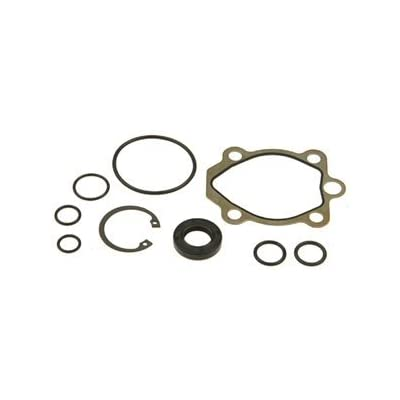 ACDelco 36-348401 Professional Power Steering Pump Seal Kit with Bushing, Gasket, Seals, and Snap Ring: Automotive