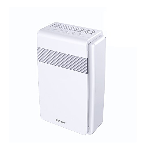 - Kavalan 5-in-1 HEPA Air Purifier, Air Cleaner Large Room True HEPA Air Filter & Negative Ion Generator, Dust Smokers Mold Germs Odor Allergy Air Eliminator – Auto Timer Quiet Operation