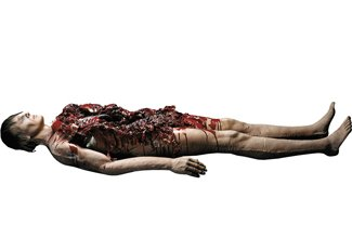 Autopsy Body Prop by Morris Costumes