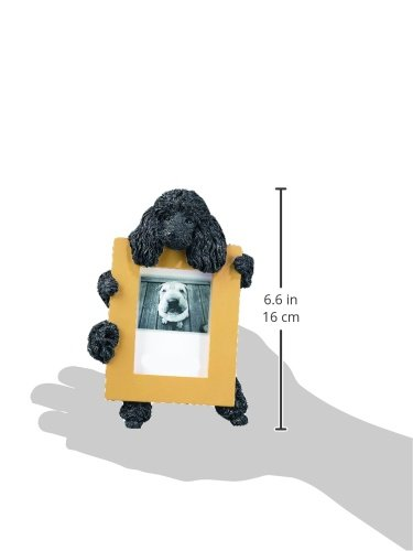 Picture of Black Poodle Picture Frame Holds Your Favorite 2.5 by 3.5 Inch Photo, Hand Painted Realistic Looking Poodle Stands 6 Inches Tall Holding Beautifully Crafted Frame, Unique and Special Poodle Gifts for Poodle Owners