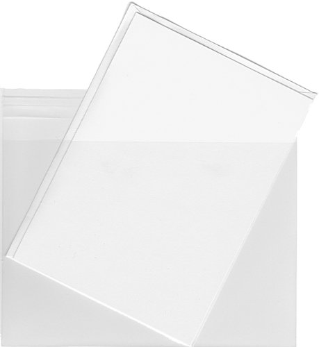 A9 Clear Plastic Envelope Bags - 100 Pieces - Measures 6 1/4