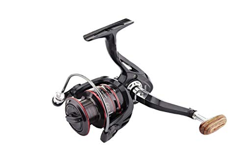 Commes MiaoII Fishing Reeld 2019 Spinning Reel 10+1 Stainless BB for Saltwater or Freshwater - Oversize Shaft - Super Value!-type5000 (Best Saltwater Spinning Reel 2019)