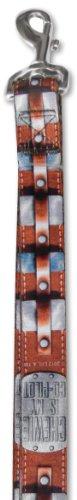 Platinum Pets Star Wars 1-Inch by 6-Feet Nylon Leash, Chewbacca Design