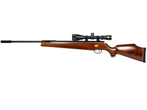 1000 fps air rifle - 6