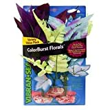 Blue Ribbon Pet Products ABLCBMVP 5-Pack African Fern Cluster Plant for Aquarium