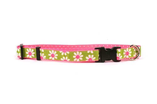 Picture of Yellow Dog Design Green Daisy On Pink Polka Grosgrain Ribbon Collar 3/4