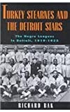 Turkey Stearnes and the Detroit Stars, Richard Bak, 0814325823