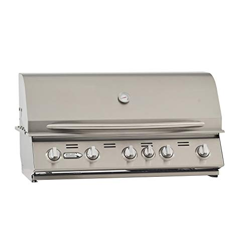 Bullet 87428 5-Burner Built (LP) Grill Head, Stainless Steel
