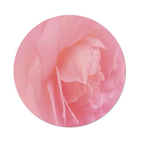 Polyester Round Tablecloth,Light Pink,Close Up Rose Petal Flourishing Macro Bloom Wedding Elegance Love Fragrance Image Decorative,Coral,Dining Room Kitchen Picnic Table Cloth Cover,for Outdoor Indoo ()