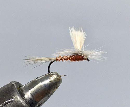 One Dozen (12) - Tactical Parachute Red Quill - Dry Fly