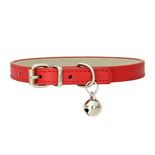 contentment Kitten Strap Necklace for Pet Collar Cats Products for Pets,Red,M