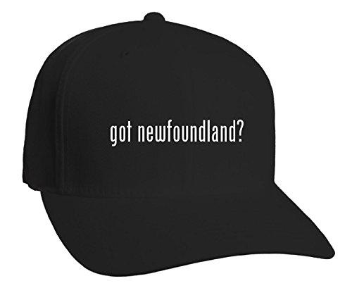 got newfoundland? Adult Baseball Hat, Black, (Newfoundland Baseball Cap)