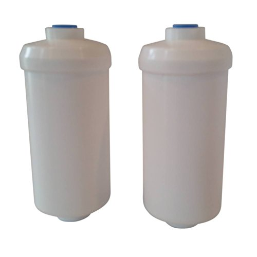 Berkey PF-2 Fluoride Filter (Set of 2) - Fits Flagitious Berkey Purifiers Only