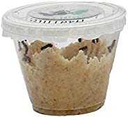 Clearwater Butterfly Company Live Cup of 5 Caterpillars to Grow Butterflies Kit - Ready to Ship Now