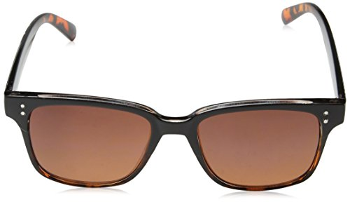 50 Cruiser Gafas Hombre para Sol Tortoiseshell Eyelevel Marrón de 8qxwdnT