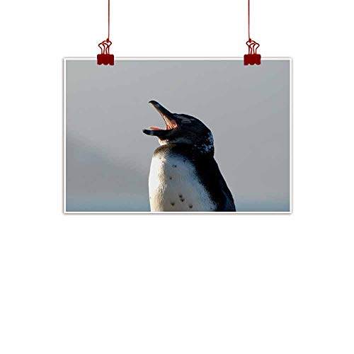 duommhome Simulation Oil Painting African Jackass Penguin for