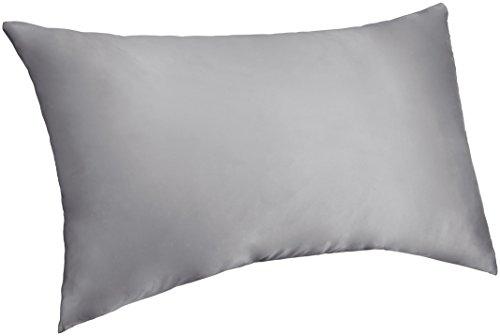 Pinzon Mulberry Silk Pillowcase - Standard,  Light Blue