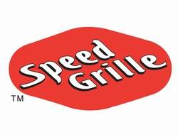 (Street Scene 950-76753 Speed Grille Bumper/Valance Grille Insert)