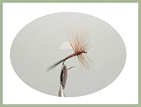 Houghton Ruby Dry Trout Flies 6 Per Pack Choice of Size Fishing Flies