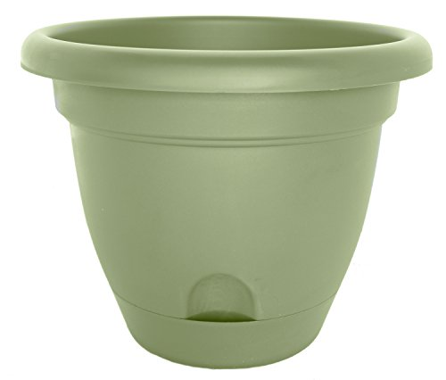 Bloem LP1642 Lucca Planter, 16-Inch, Living Green