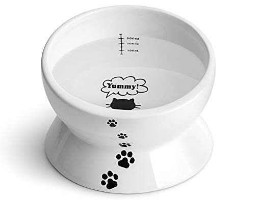 Y YHY Ceramic Raised Cat Food Water Bowl, 15 Ounce Slanted Cat Bowl, Tilt Angle Protect Cat's Spine, Stress Free, Backflow Prevention, Gift for Cat, Cat Dish, White