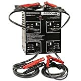 Charger 12V 0-20 Amp 4X2 0 Intellamatic Gang Char-2pack