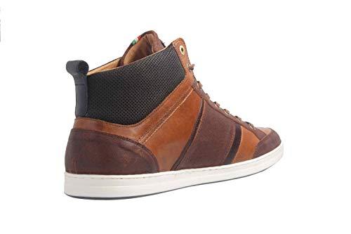Sneaker d'Oro Collo Uomo Di Pantofola Guscio Tartaruga Mid Mondovi a Alto Z4xpZwOqt