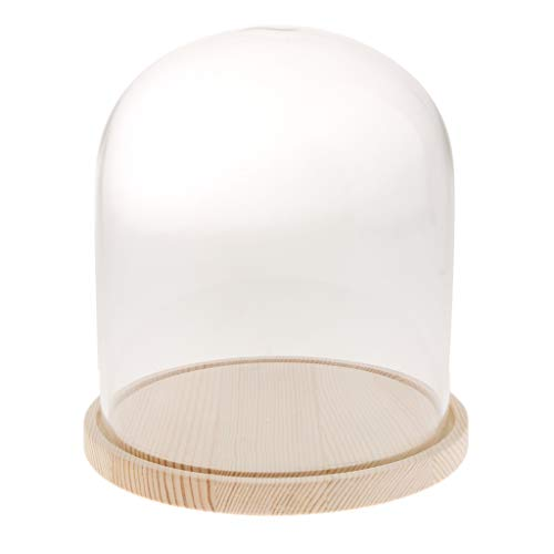 - Display Glass Cover Flower Cloche Jar Dome with Wood Base Centerpieces Decor - D