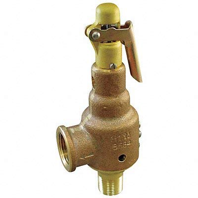 D4479 Safety Relief Valve 1-1/4 x 1-1/2 100psi