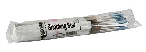 Wild Herb Incense - 100pc Wild Berry Incense Bundle - Shooting Star