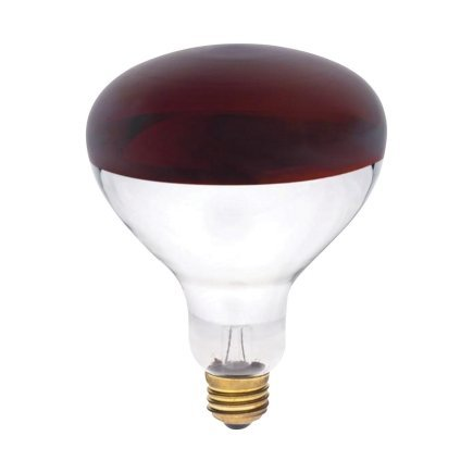 Westinghouse R40 Infrared Heat Lamp Unlensed 250 W E26 Medium Base Red Boxed
