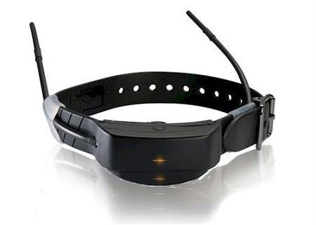 SportDOG TEK-AD Series 1.0 Add-A-Dog Collar