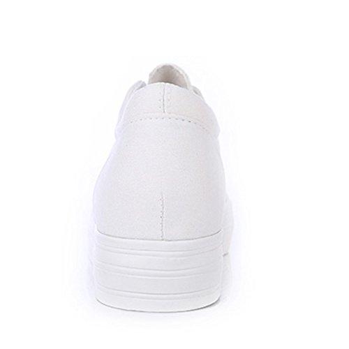 Toile Femmes Espadrilles Baskets forme Confortable Loisir Plate Shenn Mode vHxXwaX