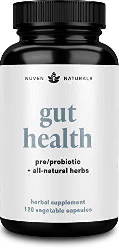 All-in-One Gut Health w/Premium Probiotics, Organic Prebiotics, Digestion-Boosting Herbs, and Adaptogens – Leaky Gut…