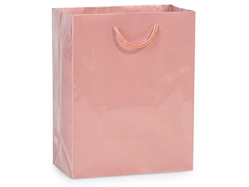 Medium Size Gloss Paper Gift Bags with Handle 8