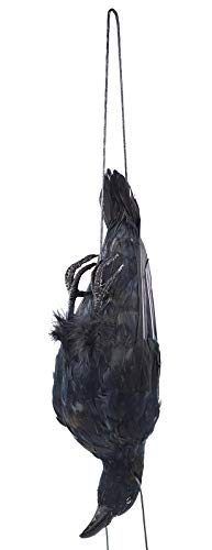 17 inch Realistic Hanging Dead Crows Decoy Lifesize Extra Large Black Feathered Scare Deterrent Crow ()